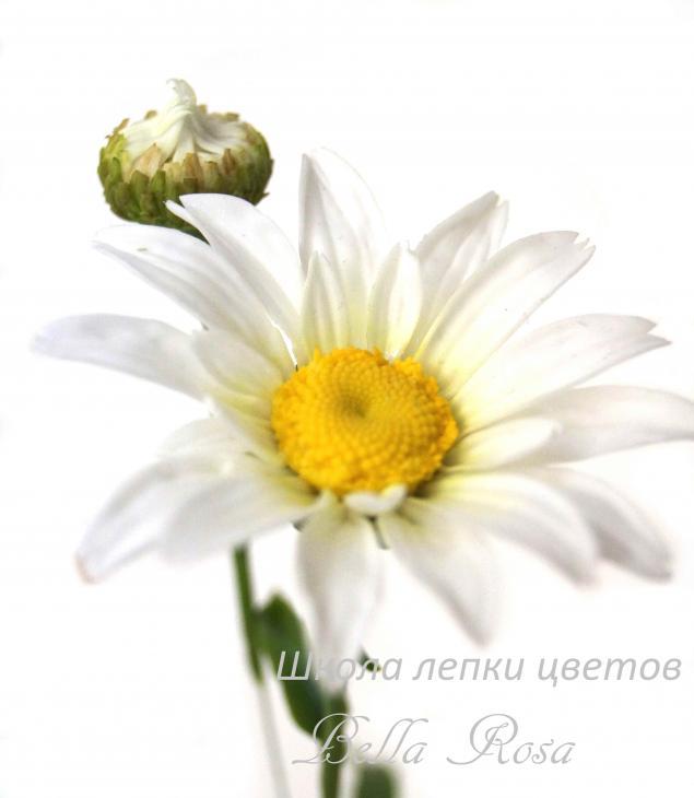 полимерная глина, мк, лепка цветов