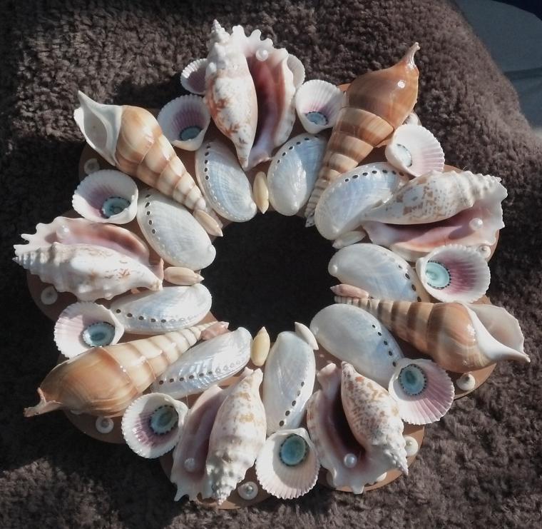 Фото картинки из морских ракушек