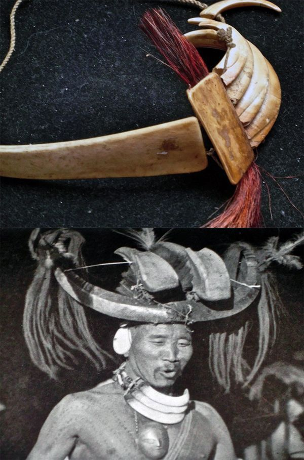 India/Burma | Necklace made of warthog tusks, bone and dyed goat hair from the Naga people | 400€  || Black and white image taken from the publication