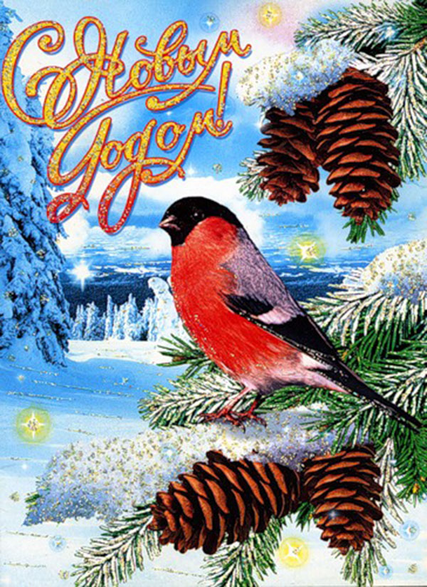 Оформление, открытка со снегирями новый год