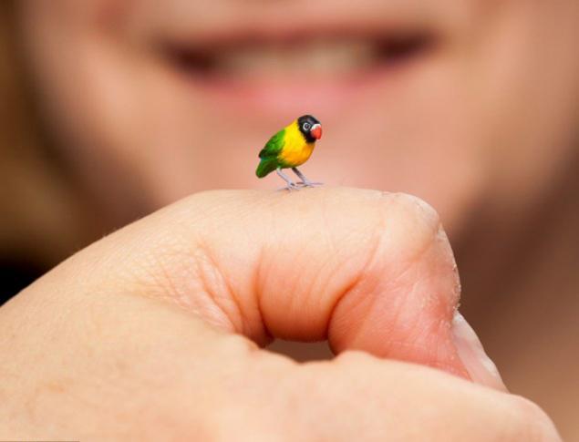 sadie campbell, деревянные птички