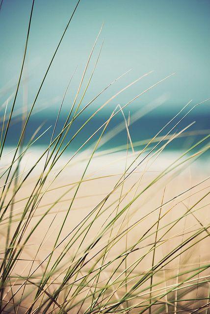 пляж, пейзаж, картина, песок