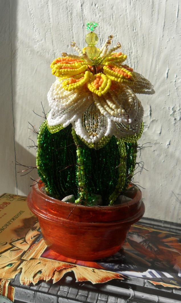 Искусственные растения ручной работы.  Бисерный кактус.  Ирина Скрипка.  Ярмарка Мастеров.