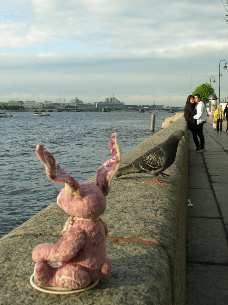 Путешествие зайца из Москвы в Санкт-Петербург, фото № 5