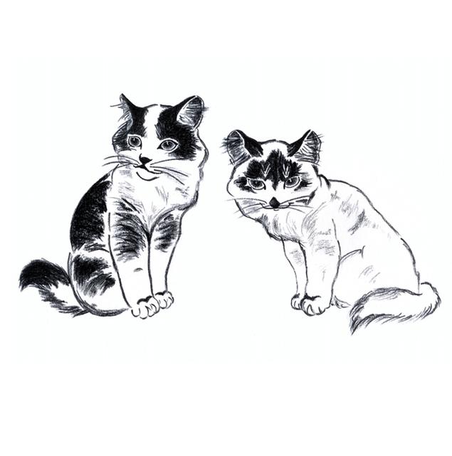 Котенок графика картинки