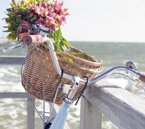 велосипед, пастель, морская тема, трава