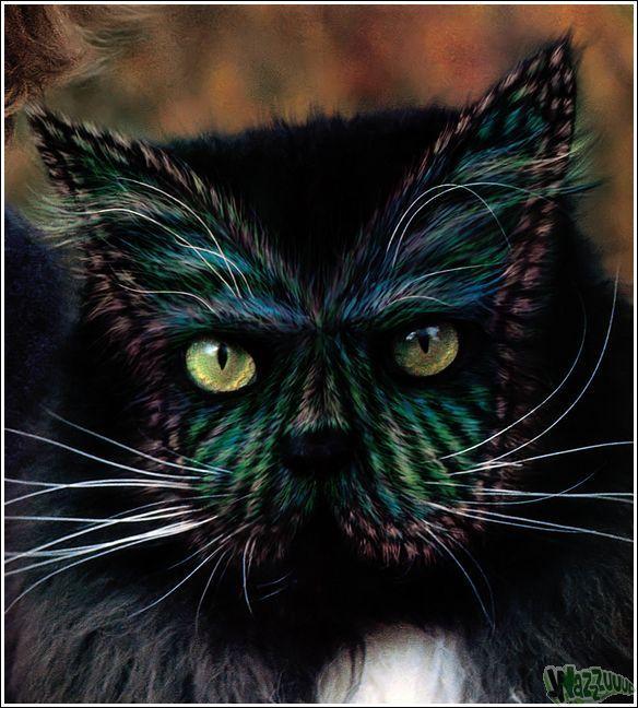 Зачем красить кошек?, фото № 27