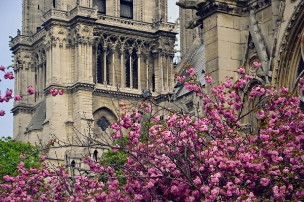 Весенний Париж, дыхание теплого ветра, фото № 4