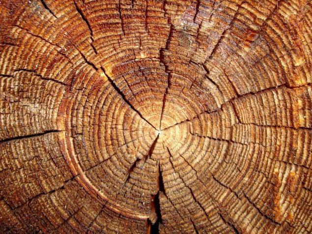 дерево, фурнитура, интерьерная
