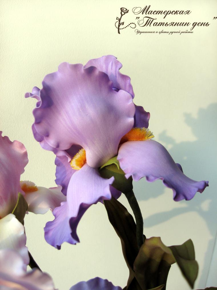 Ирис из фоамирана мастер класс с пошаговым фото   Идеи для ... Ирис Цветок