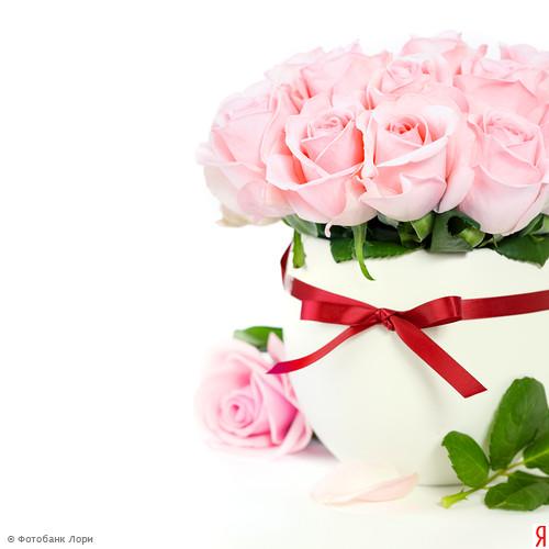 Поздравления с днём рождения для красавицы 595