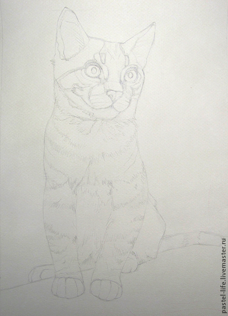 Master-class on drawing kitten in pastel