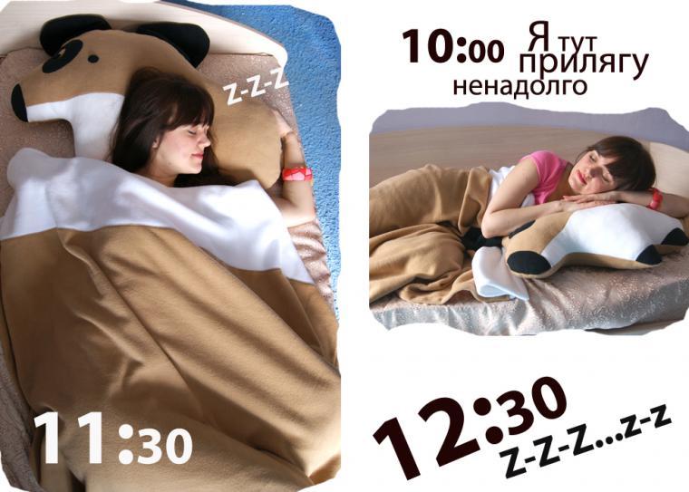 подушка на диван, собака, игрушка