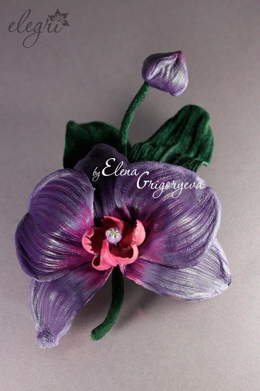 купить цветы, обучение цветоделию, орхидея люксембург
