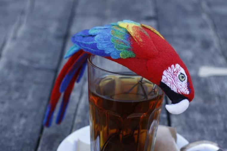 попугай, войлок