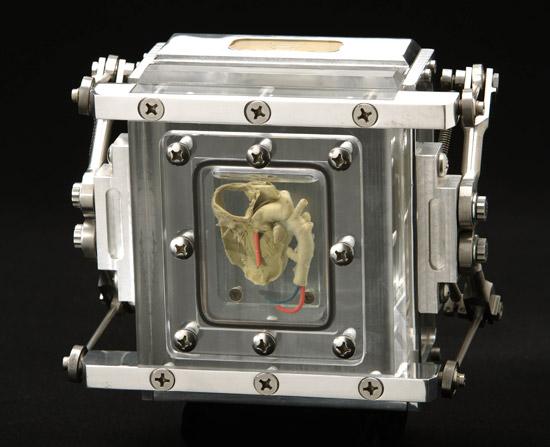 эксклюзивная фотокамера