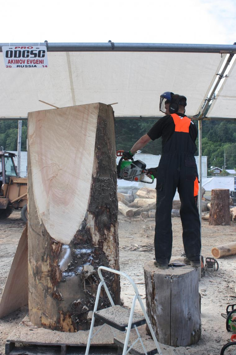 резьба бензопилой, фестиваль скульпторов