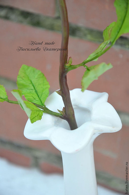 розыгрыш, холодный фарфор, цветы из полимерной глины, праздник