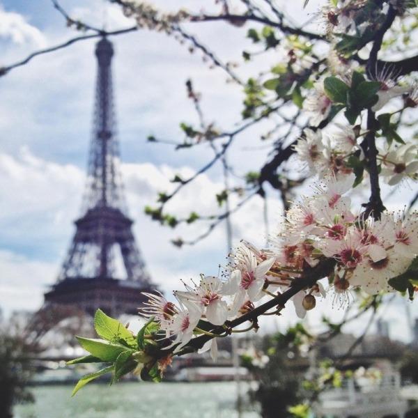 Весенний Париж, дыхание теплого ветра, фото № 8