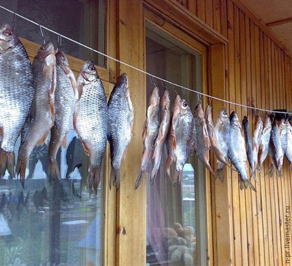 Что делать если вяленая рыба засохла