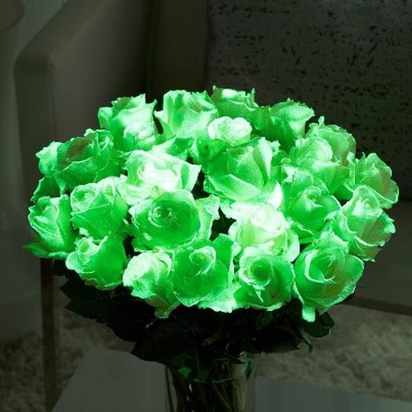 Купить светящиеся в темноте розы