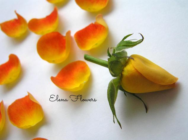 цветы из ткани, броши