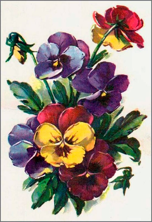 открытки куртенко