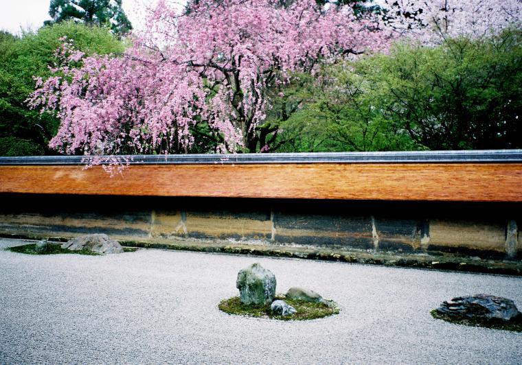 Микромиры: японские сады камней, фото № 2