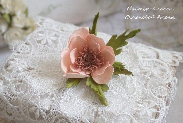 фоам, английская роза