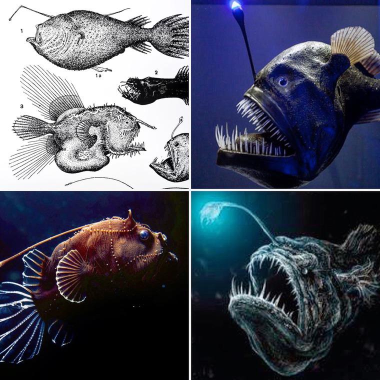 море, процесс создания