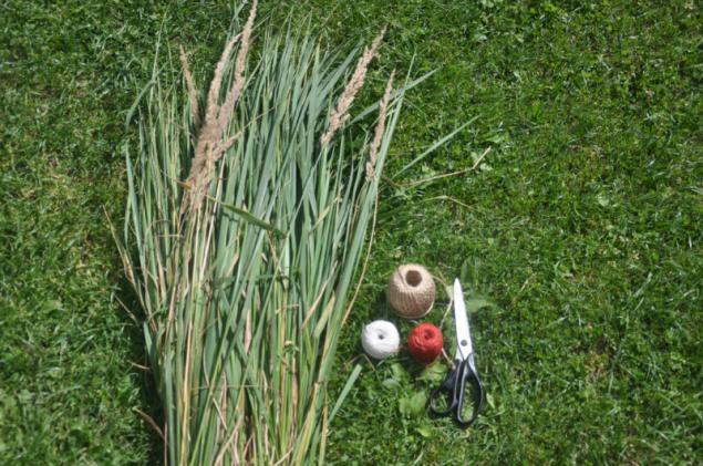 grass, classes for children