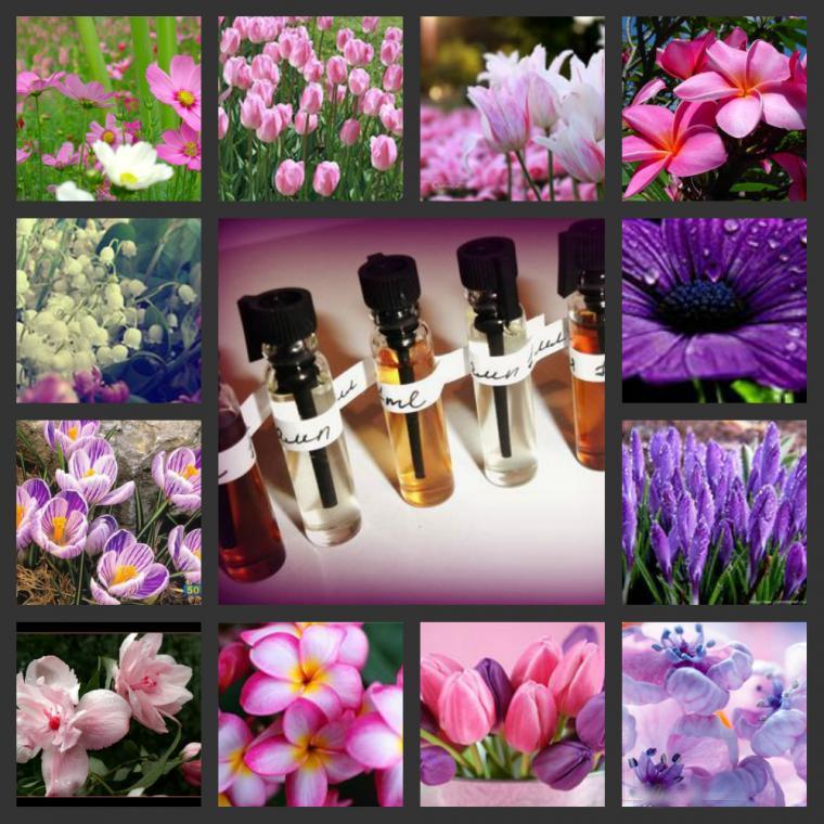 софико, духи, аромат, парфюм, подарок, парфюмерия, весна, для девушки, для женщины, для мужчины, цветы, цветок, цветочный
