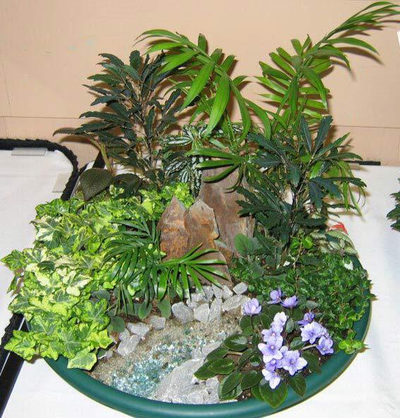 мини-садик, флористика, мастер-класс, мастер-класс по цветам, растения