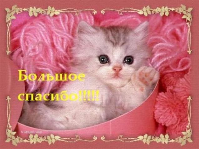 http://cs3.livemaster.ru/zhurnalfoto/1/3/5/131125160756.jpg
