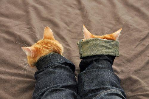джинсовый