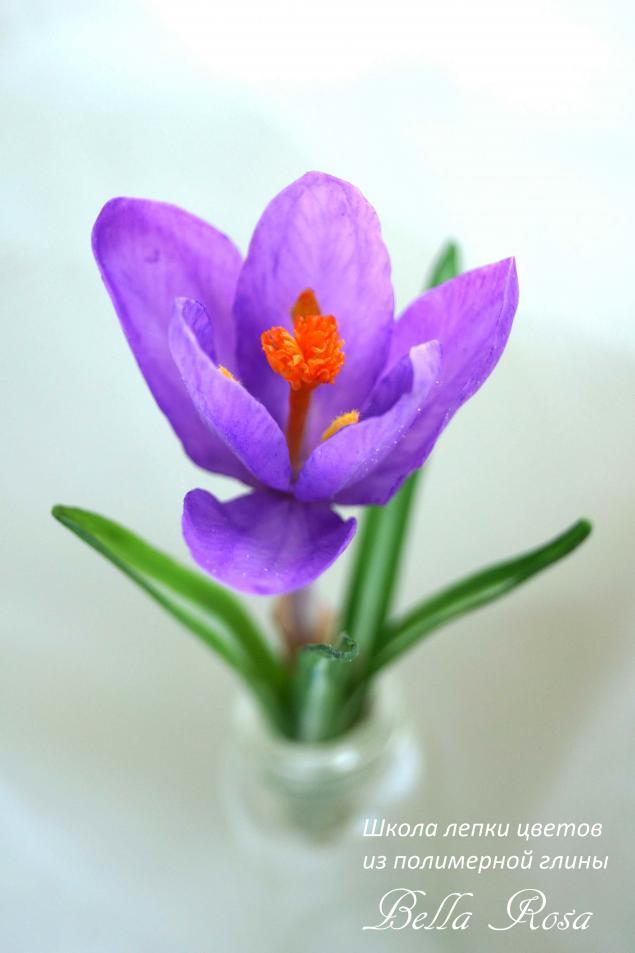 керамическая флористика, школа лепки цветов, мастер-класс по цветам