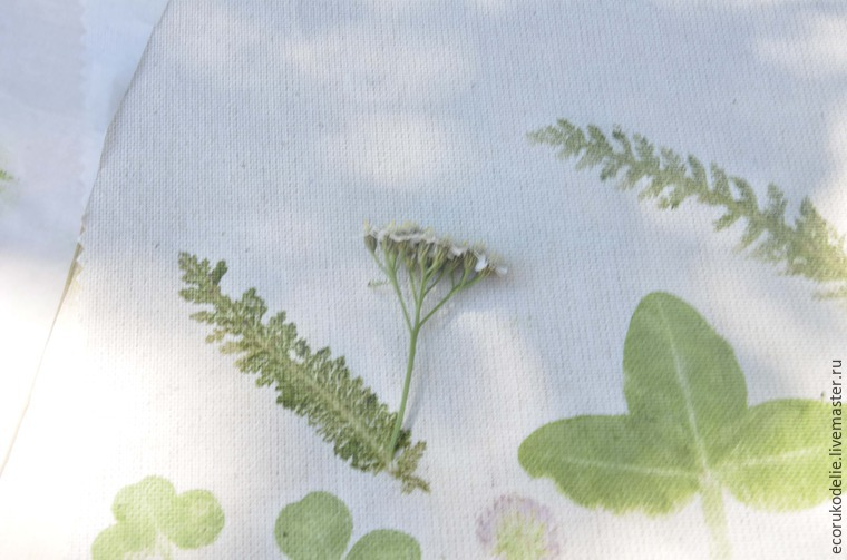 How to Make Plant Prints on Fabric, фото № 10