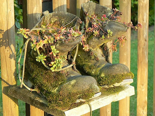обувь в саду