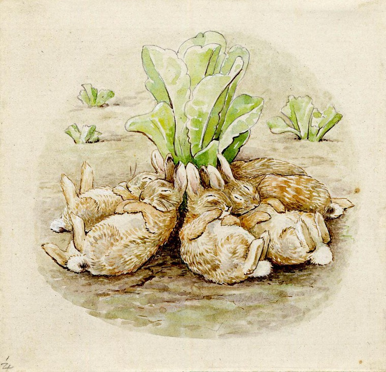Интересные факты о Беатрис Поттер и ее знаменитых кроликах, фото № 9