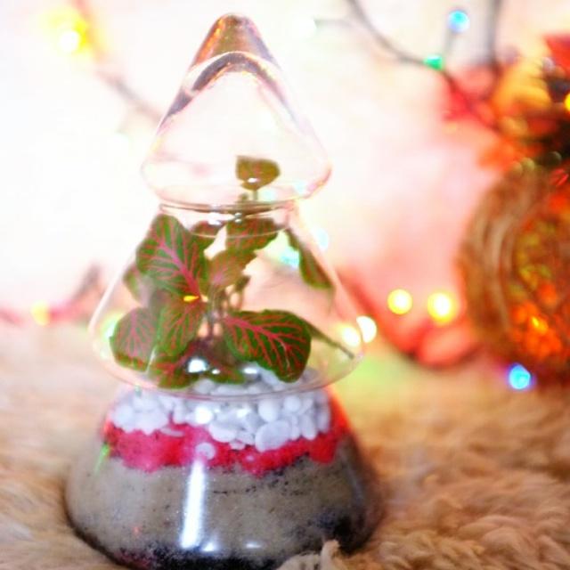 флорариум, уникальный подарок, декор интерьера, флора, подарок на день рождения, индивидуальный заказ, пасха