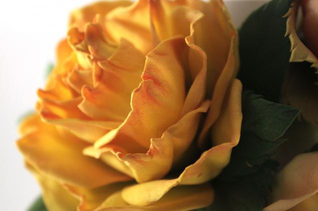 роза из фоамирана, мастер класс роза из фома, цветы из фоамирана, фоамиран
