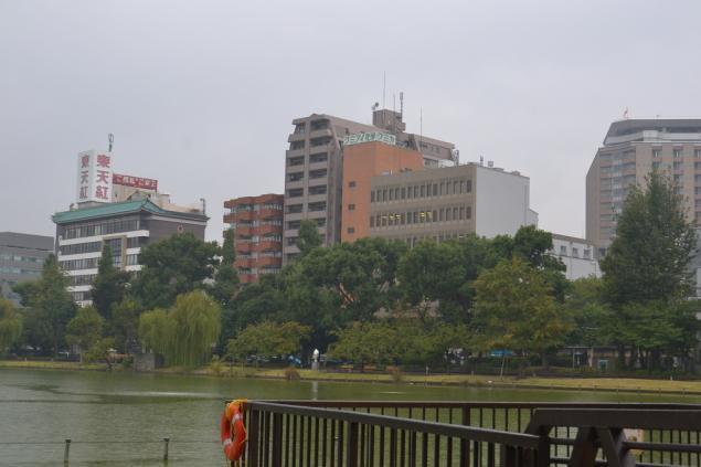 Дикий забег по Токио за 7 дней. День пятый. Зоопарк Уэно и детские магазины., фото № 54