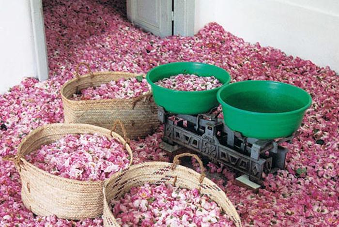 Как сделать цветочное масло
