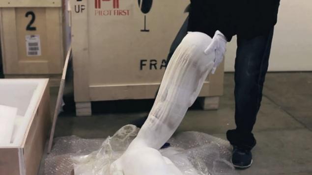 В Нью-Йорке проходит выставка растягивающихся скульптур из бумаги, фото № 5