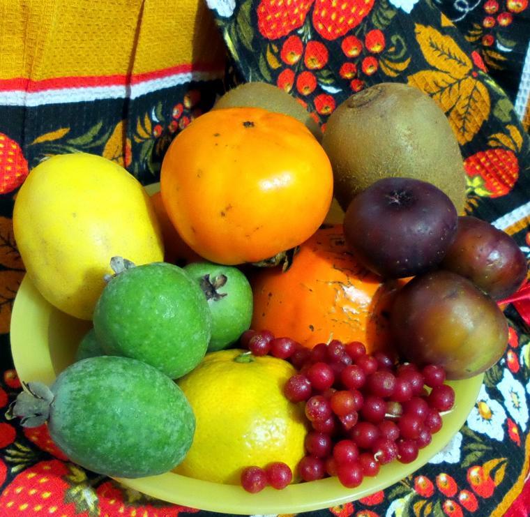 осенние фрукты, южные фрукты, фрукты, инжир, хурма, киви, лимон, мандарин, фейхоа, ягоды лох