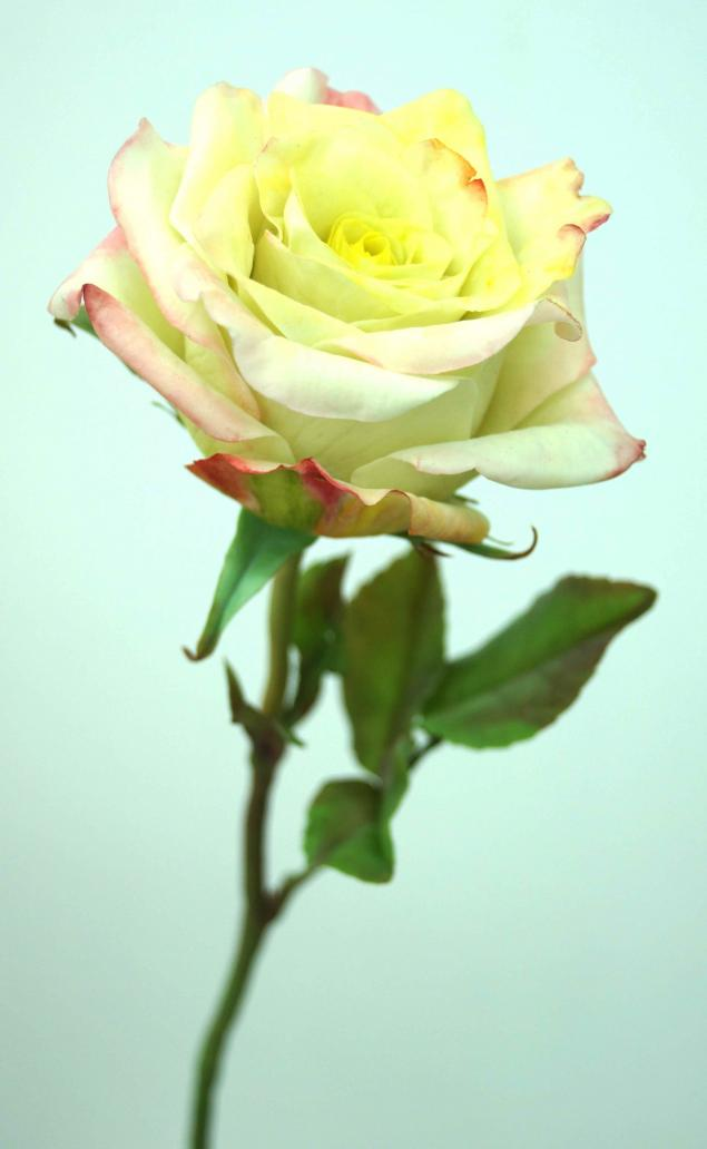 керамическая флористика, школа лепки цветов