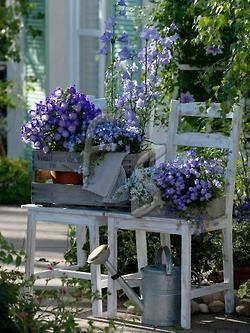 Я в саду! Заходите!, фото № 32