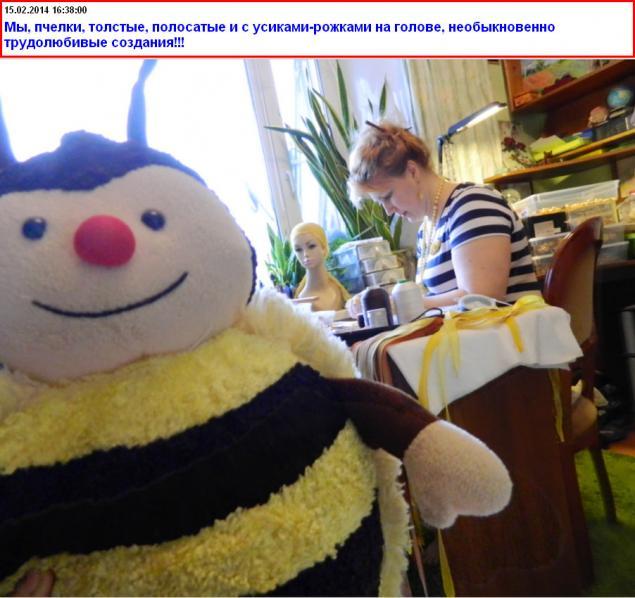 также, фото жирной пчелки просим