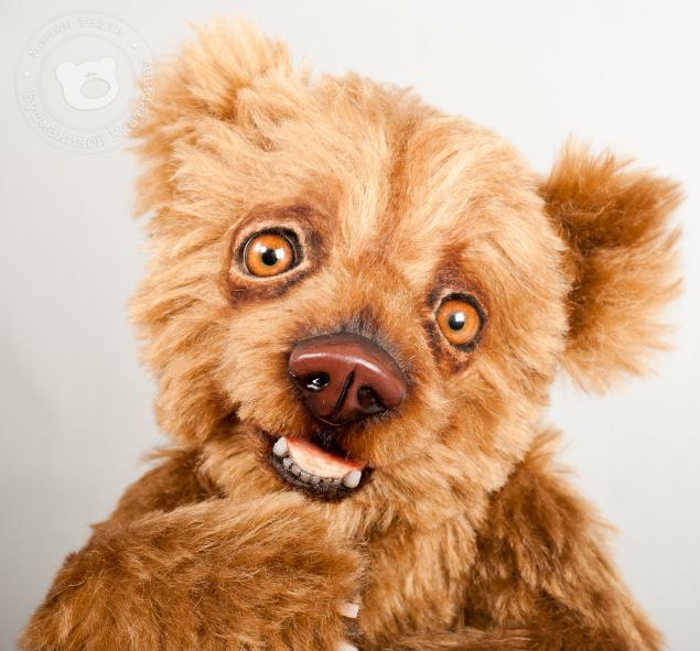 total bear