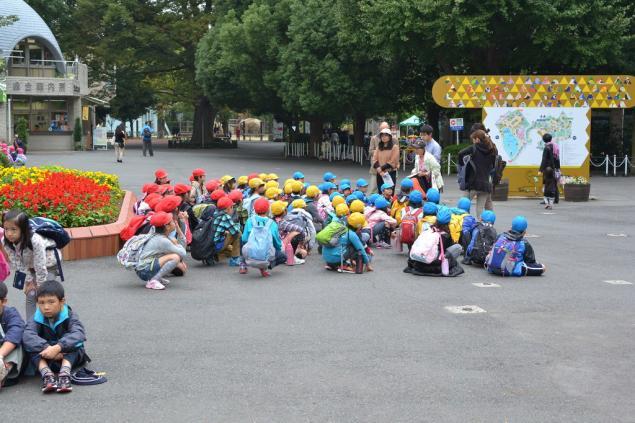 Дикий забег по Токио за 7 дней. День пятый. Зоопарк Уэно и детские магазины., фото № 5